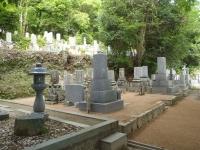 墓地の危険木伐採
